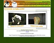 Reptile and Exotic Pet Store Website