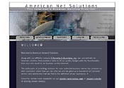 American Net Solutions website