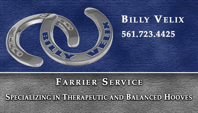 E perrotta professional graphics advertising and marketing solutions bv farrier business card colourmoves