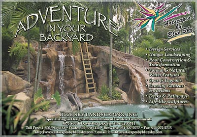 Adventure in your Backyard