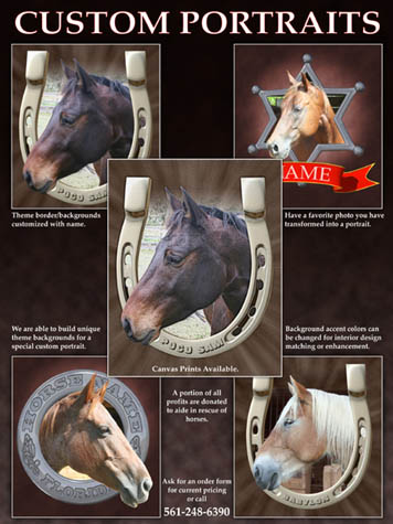 Equine Custom Portraits